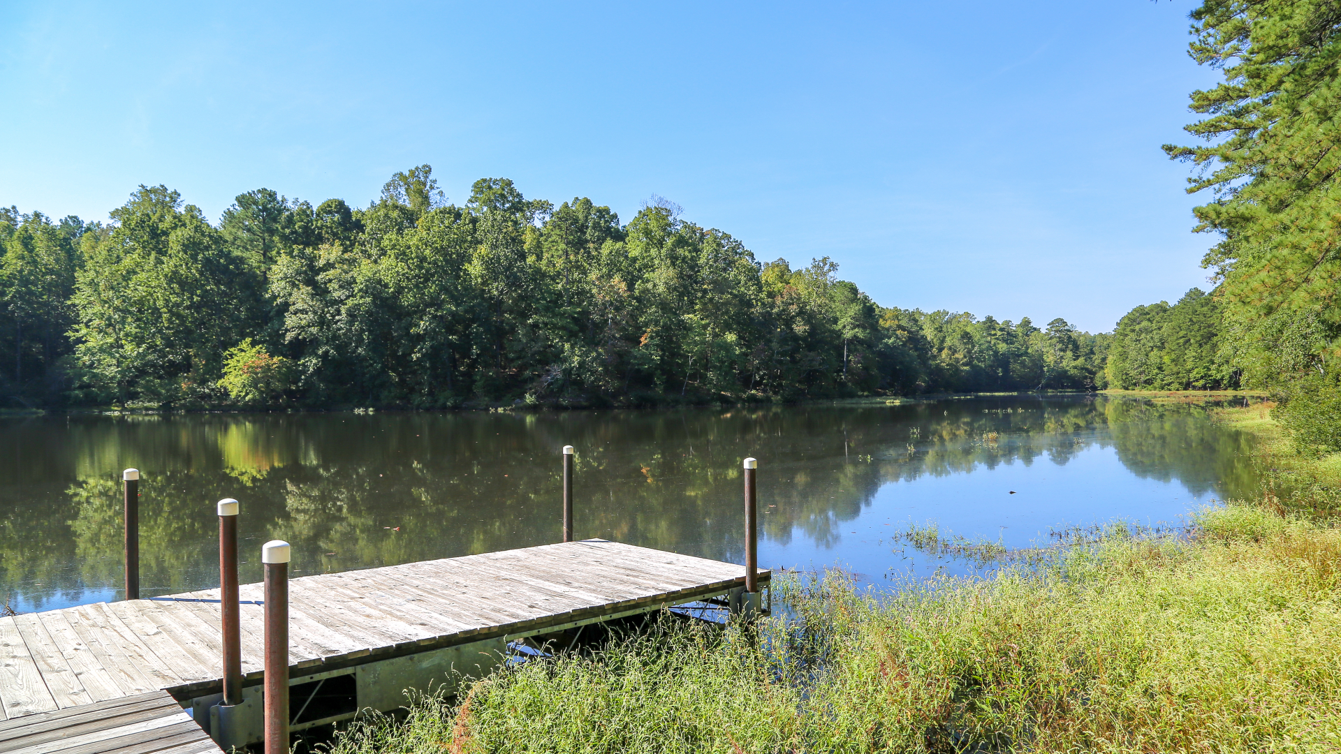 View of the lake and dock at Durant Nature Preserve