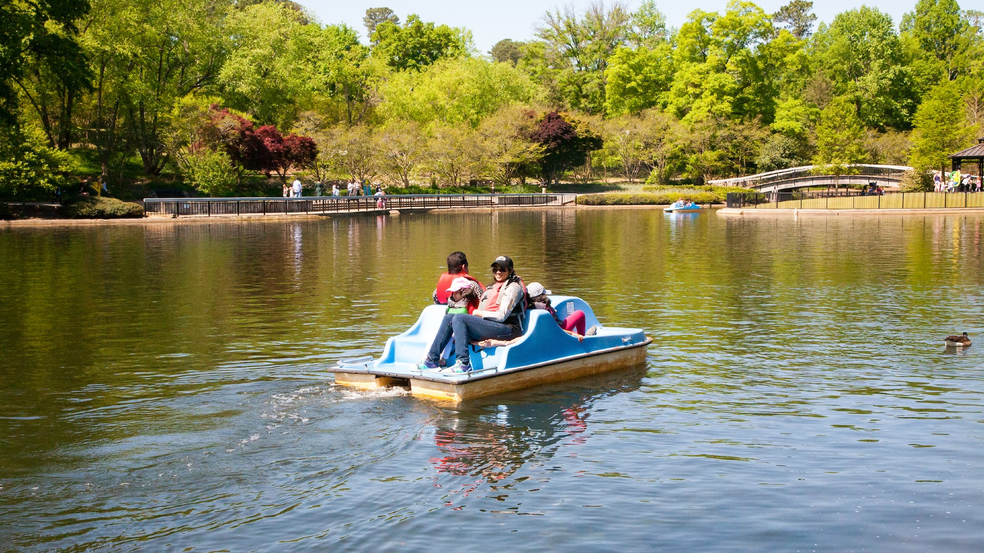 Family of four using a pedalboat at Pullen Park lake