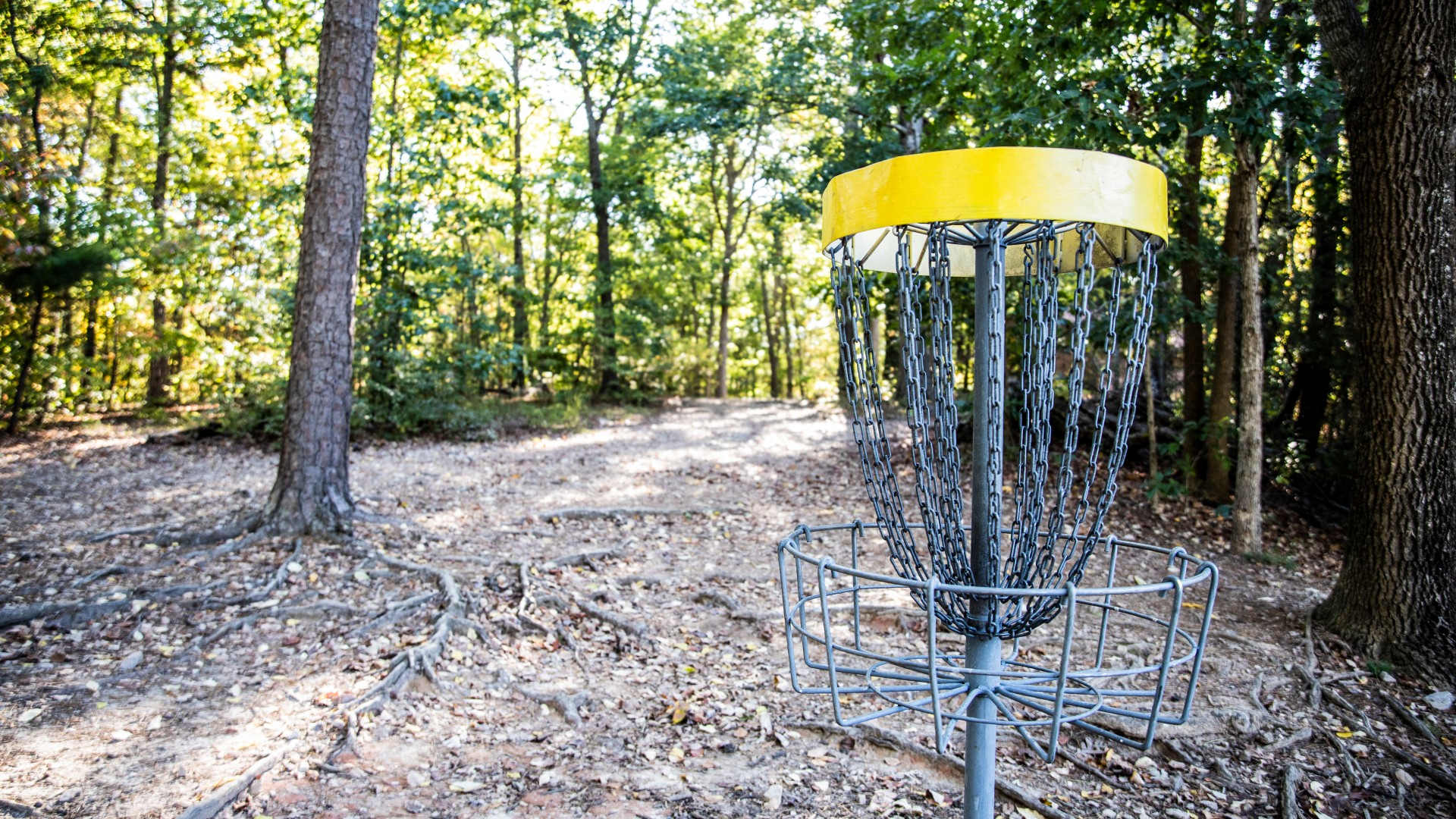 Part of the Cedar Hills Park disc golf course