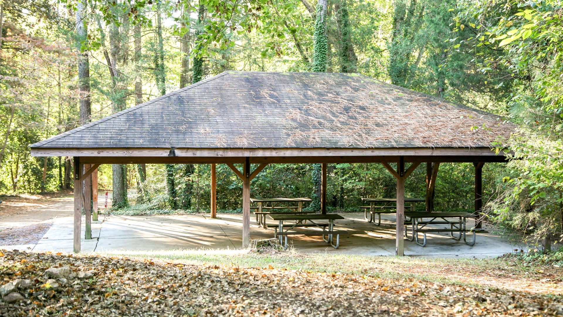 Outdoor picnic shelter at Glen Eden Pilot Park with five picnic tables