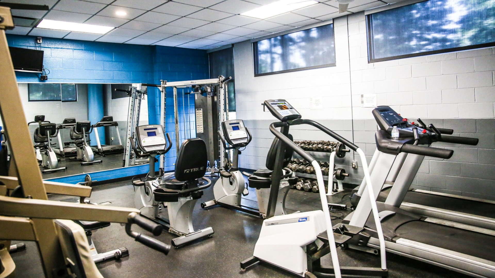 Shot of some of the fitness equipment in the fitness room at Green Road Park