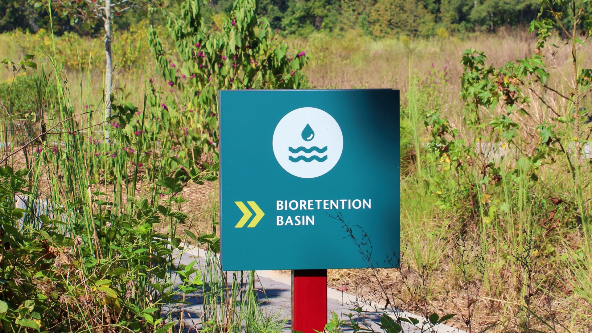 "A shot of a sign that reads ""bio-retention basin"" at Horseshoe Farm Nature Preserve"