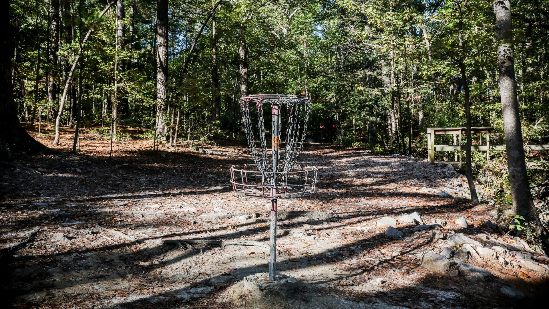 Part of the outdoor disc golf course at Kentwood Park
