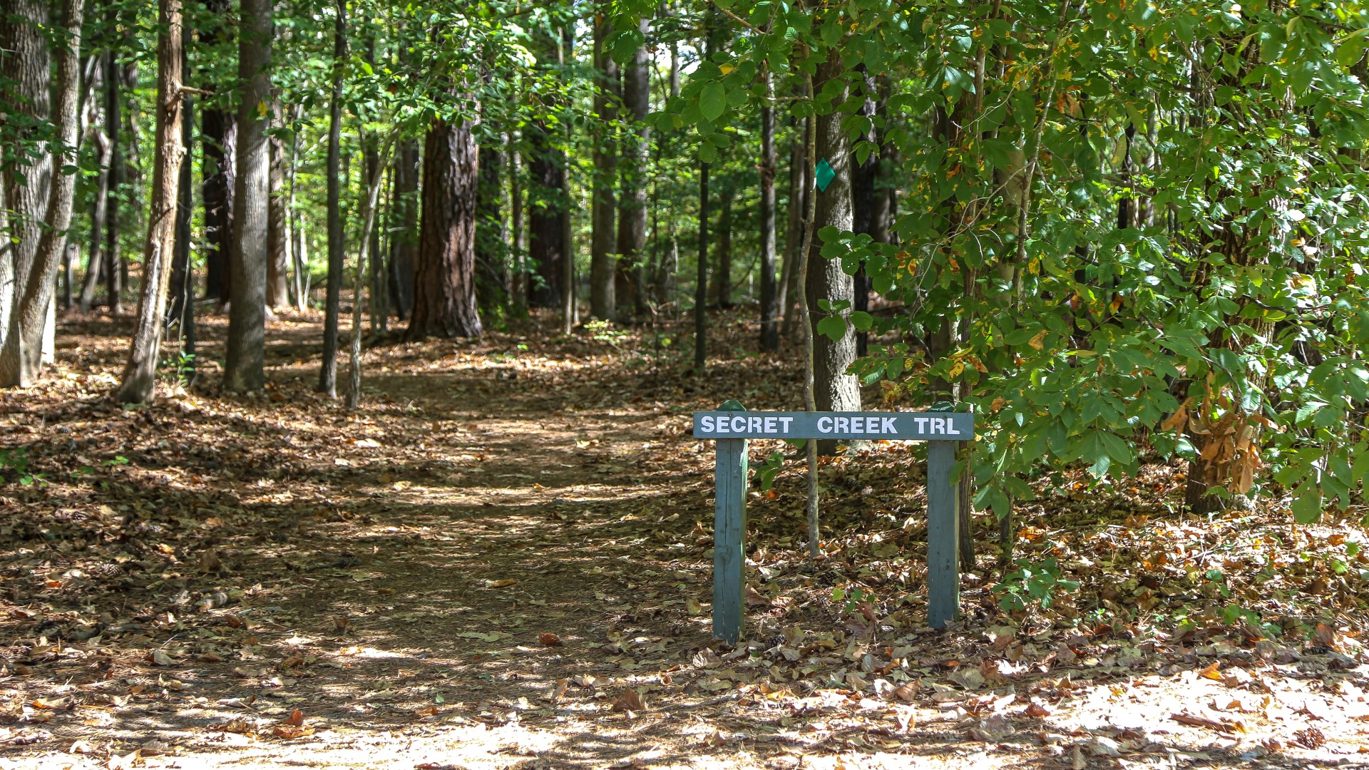 One of the many unpaved trails