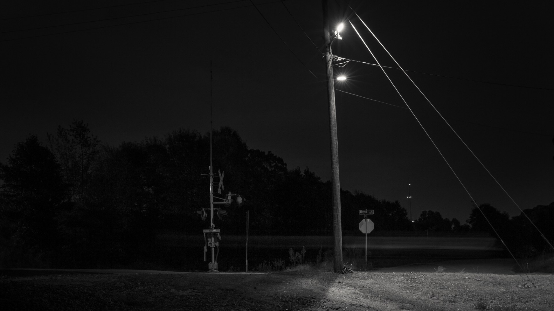 A black and white photograph of a street light and street sign at night by Adam Bellefeuil