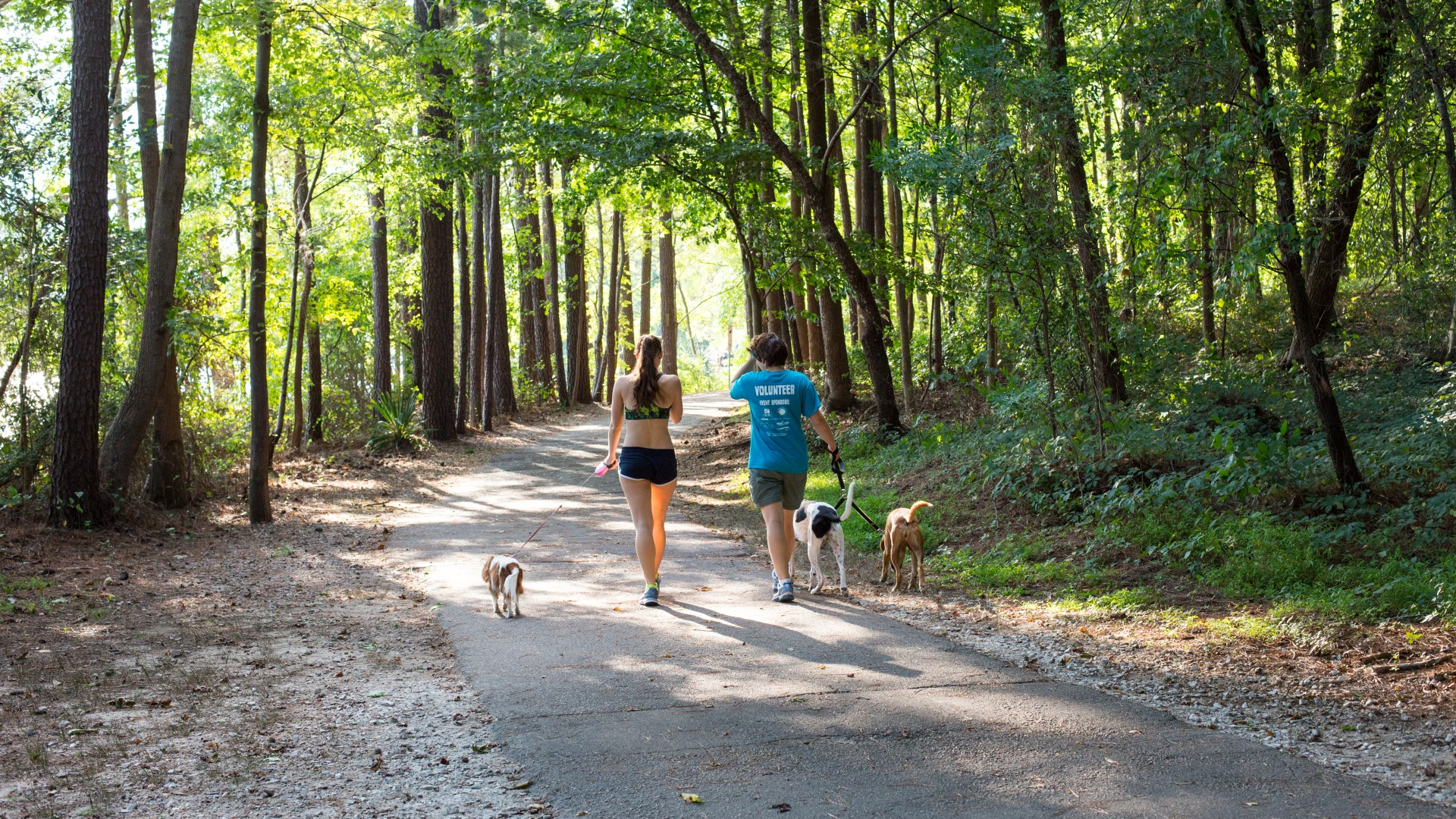 Two people walking their dogs along a greenway trail