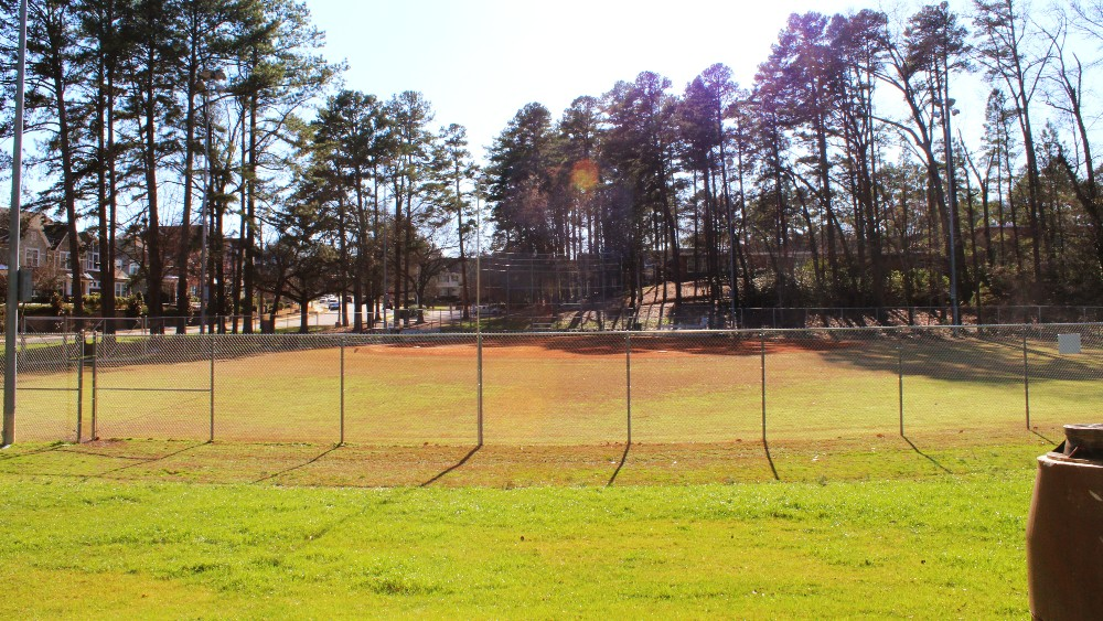 Green grass of fenced in baseball field