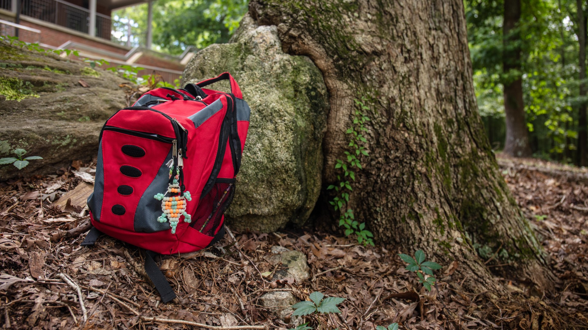 A red discovery backpack sitting up against a tree