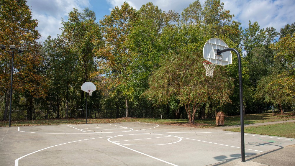 Basketball court with two hoops surrounded by green trees