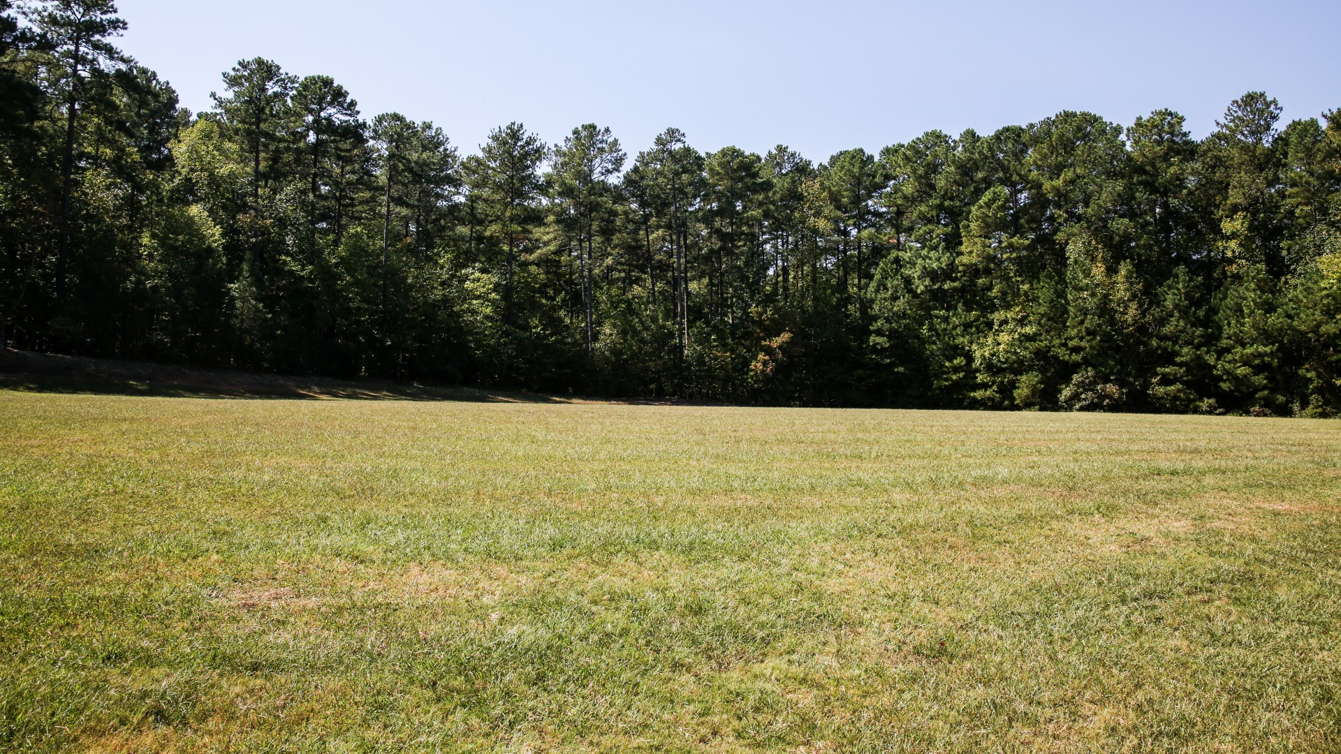 A large open field available for multipurpose use