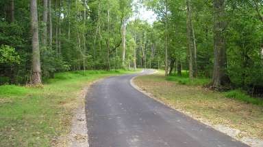 Paved trail winding through trees.