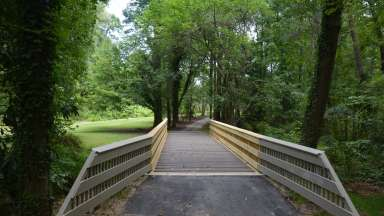 bridge near grassy area heading into forest at Kaplan park