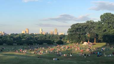 View of Flower Field at Dorothea Dix Park