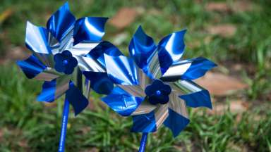 Two pinwheels in grass at the park