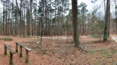View of wooded area in Durant Nature Preserve to become playspace