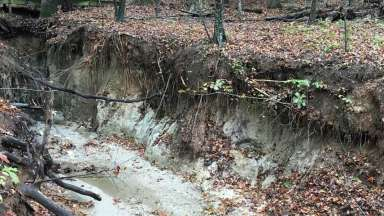 An eroded stream at Durant Park in Raleigh