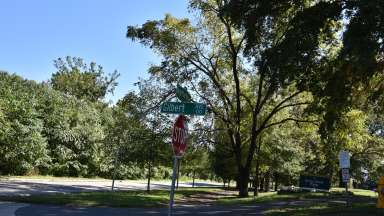 trees and street sign at the park entrance