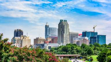 Downtown Skyline Raleigh and rosebush