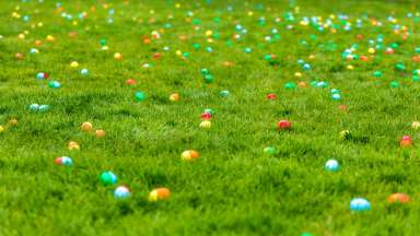 Colorful easter eggs scattered in green grass