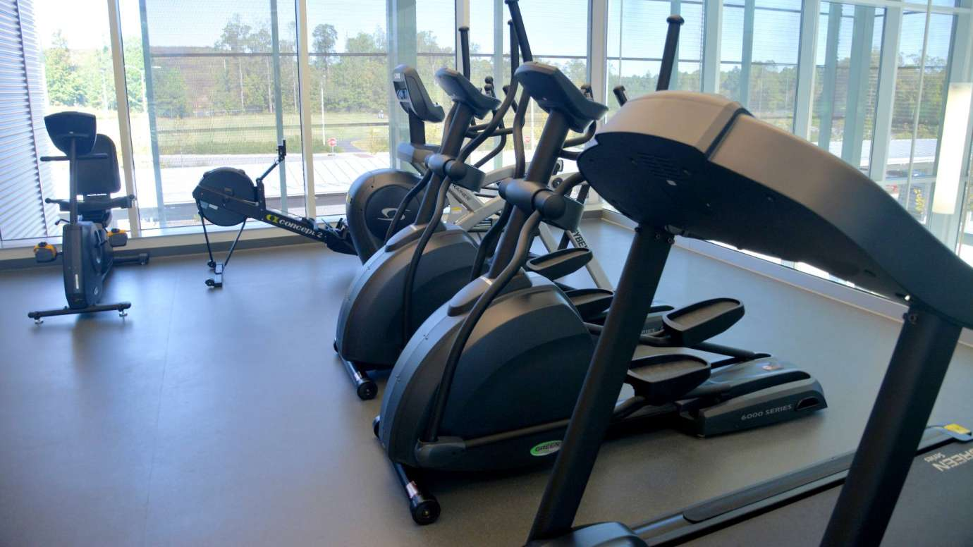 Treadmills and elliptical machines in the Abbotts Creek Fitness Room